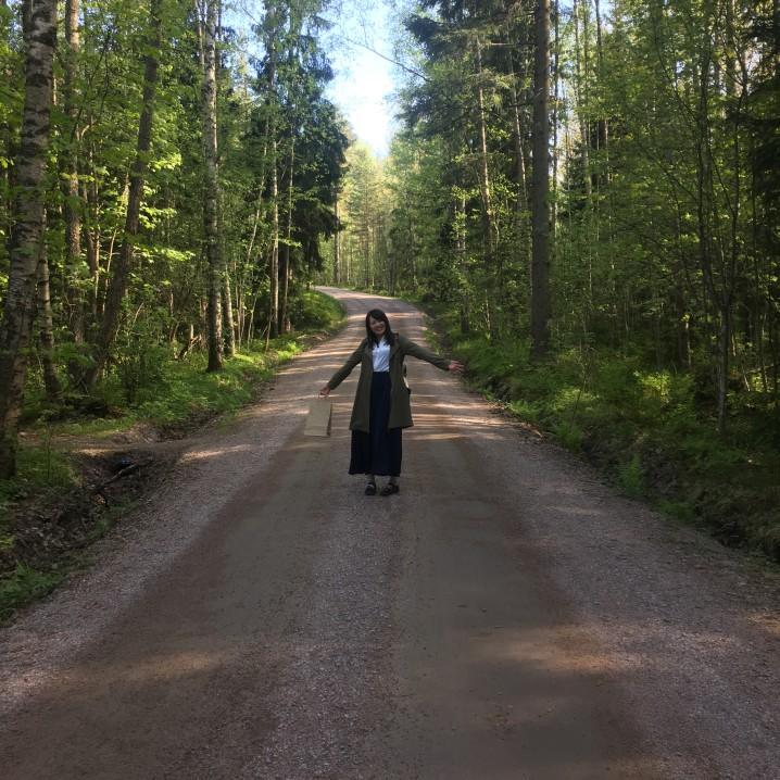フィンランド ツアー かもめ